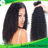 Prolonge crépue de cheveux humains de cheveu bouclé de cheveu brésilien non transformé de Vierge de 100%