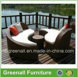 庭のための屋外の柳細工のサンルームの家具