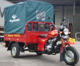 Tipo di azionamento ed uso motorizzati del passeggero per un triciclo delle tre rotelle