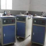 Professionele van het Afval Plastic het Wassen en van het Recycling Lijn 1000kg