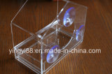 Clear Plexiglass Acrylic Bird House