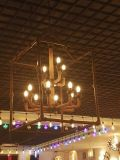 装飾のための多彩なLEDの星明かりの電球G95-25LED