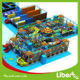 Childrenのための中国Large Commercial Used Soft Indoor Playground Sale