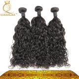 Onda di acqua di trama indiana dei capelli umani del Virgin di qualità più fine (FDX-IWW)