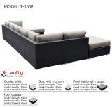 Conjunto seccional del sofá de la rota del PE de la sala de estar