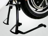 Bici elettriche superiori della bici elettrica della via di Electric Bicycle Company