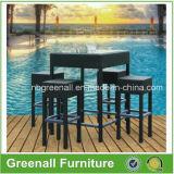 Présidence utilisée extérieure de barre de meubles de jardin de rotin de PE (GN-8678D)