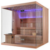Quarto luxuoso da sauna do projeto novo