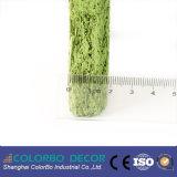 Matériaux de bois naturel Fond d'écran de laine de bois