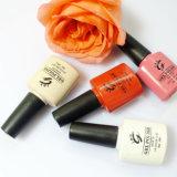 Bonne qualité OEM Label Label Gel à ongles Polonais pour Nail Art