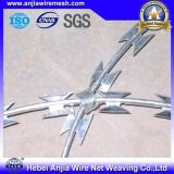 Anti-Climb Security Barbed Razor Wire Wire SGS para Esgrima