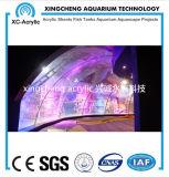 Projeto acrílico personalizado do aquário do painel