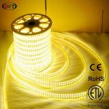 certificazione impermeabile flessibile di RoHS del Ce dell'indicatore luminoso di striscia di 5050 144LEDs LED