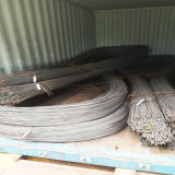 Tondo per cemento armato rinforzante d'acciaio di qualità principale laminata a caldo di ASTM
