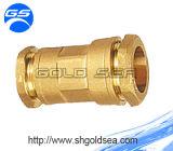 Brass français Compression Fitting pour le PE Pipe
