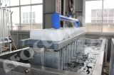 Buona macchina del ghiaccio in pani di vendita con il sistema di refrigerazione della salamoia, 10 tonnellate al giorno