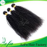 capelli ricci crespi mongoli del Virgin del tessuto dei capelli del grado 7A