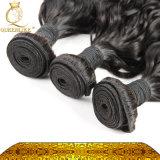 最も良い品質のインドのバージンの人間の毛髪Weft-水波(FDX-IWW)