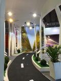 cubierta solar del alumbrado público de 100W LED con la manera de Spreed de la carretera de la autopista sin peaje de la calle principal