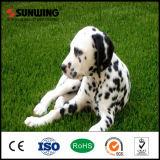 Gramado artificial de Gass do Animal de estimação-Cuidado comercial barato natural de Sunwing para o cão
