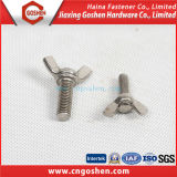 Verbindungselement Bolt und Nut/Hex, Flange, Cap, Wing Head Bolt