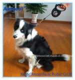 Heißer Verkaufs-neue Hundehundeleinen, einziehbare Leine