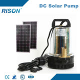 (12V, 24V) DC Solar Pump (직접 위원회와 연결하십시오)