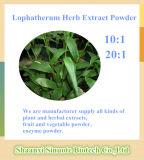 20:1 naturale di 10:1 della polvere dell'estratto dell'erba di Lophatherum del fornitore