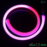 Indicatore luminoso al neon della corda della flessione del pixel DMX512 LED con 2 anni di garanzia della fabbrica