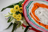 Trug Baumwollhaar 100% gefärbtes Gewebe auf