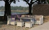 卸し売りホテルの別荘の大きいバルコニーの庭のコーナーのソファーによって423