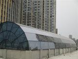 Tetto di vetro globale dei lucernari della struttura d'acciaio del porto
