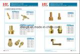 Ajustage de précision de pipe en laiton de connecteur de picot de boyau