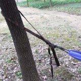 Porte les courroies respectueuses de l'environnement extérieures d'arbre d'hamac de qualité