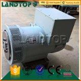 LANDTOP 경쟁적인 다이너모 발전기 가격