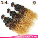 armure indienne de cheveu de cheveu de la Vierge 9A de paquets d'Ombre d'onde de son profond indien du cheveu bouclé deux