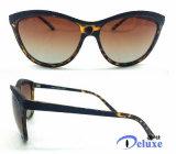 بلاستيكيّة نمط نظّارات شمس لأنّ نساء مع عادة علامة تجاريّة ([دب1139تل])