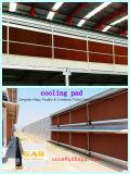 低価格のターンキープロジェクトおよび家禽の家のための高品質