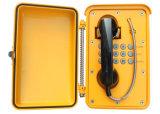 Telefono resistente di Industial del vandalo impermeabile resistente del telefono Knsp-01t2s