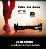 6.5inch Smart Balance Electric Skateboard