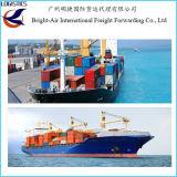 Frete da agência do navio de carga do navio do mar de China a Mejillones, o Chile