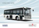 Pièces de moteur pour Chang une Sc6881 Bus