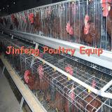 une cage alimentante de matériel de volaille de système de poulet de bâti de batterie pour la ferme