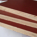 El precio bajo 12m m imprimió la madera contrachapada hecha frente película del álamo de Brown