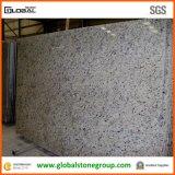 Großhandelsbrasilien-dekorativer weißer Granit für Countertops/Bodenbelag-Fliesen