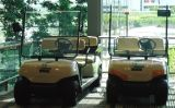 Тележка миниого гольфа 4 Seater электрического Sightseeing