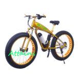 Fetter Gummireifen-Gebirgselektrisches Fahrrad mit 500W Motor Ebike