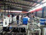 Qualidade de Formosa, alta velocidade, tipo Hobbing saco do cortador de rolo automático que faz a máquina