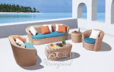 Jogos ao ar livre do sofá, mobília do Rattan do pátio, jogos do sofá do jardim (SF-318)