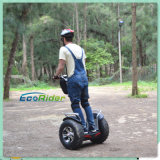 4000 promocionales Watt Electric Self Balancing Chariot con LED Light